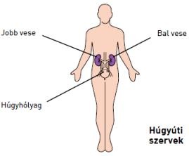 Vesebetegségek