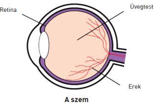 két szem látásvizsgálata